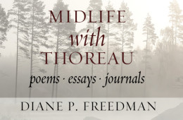 Yoga Morning | An Excerpt from Midlife with Thoreau by Diane P. Freedman