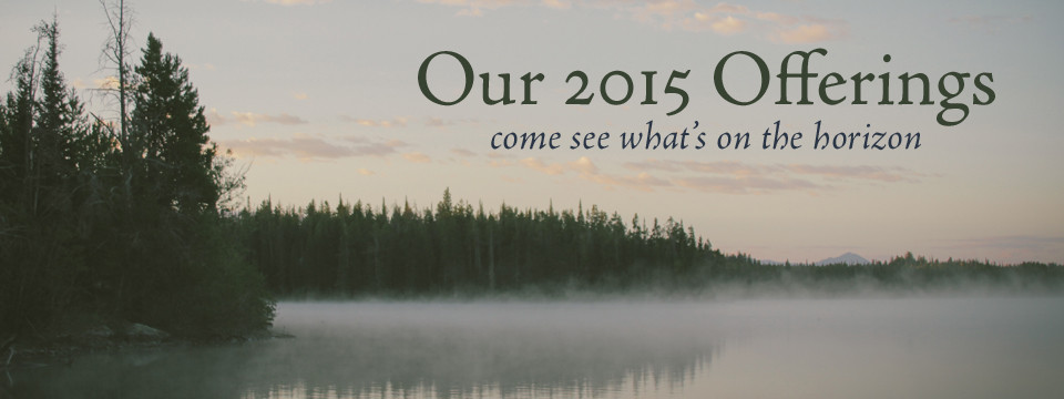 Our 2015 Offerings