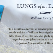 Mountain Thoughts | An Excerpt from Lungs of My Earth by William Henry Searle