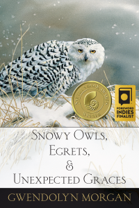 Snowy-Owls-cover-final-awards