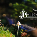 Hiraeth Press is Returning to the Earth